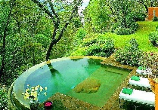 Ландшафтный бассейн в окружении первозданной природы