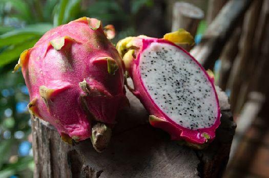 Данный фрукт получил своё название из-за внешнего вида, напоминающего драконью чешую
