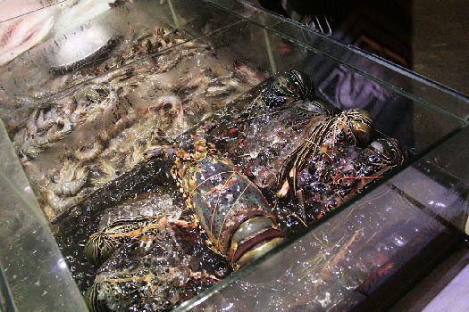 Изюминка джимбаранских ресторанов - живые морепродукты, которые попадают к вам на стол практически сразу после того, как их выловили в океане