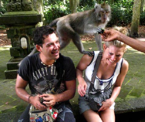 Если Вы забрели в лес обезьян, то берегите украшения )