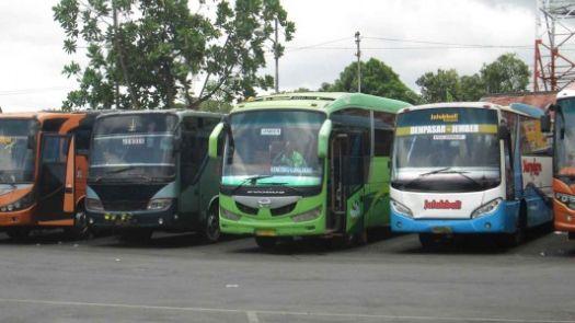 Автобусы - более дорогой, но и более комфортный и безопасный вид транспорта.. Особенно рекомендуем для больших групп..