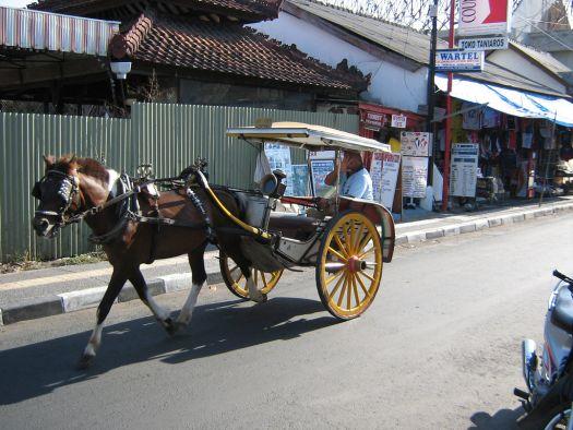 Конные повозки Докар на Бали